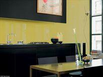 Glazen keukenwand colorbel